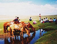 モンゴルで乗馬ツアー中