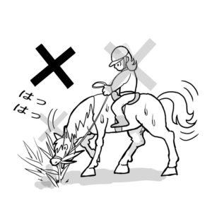 駆け足して馬が汗をかいていたら草は食べさせない